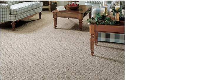 HomeCraft carpet living room